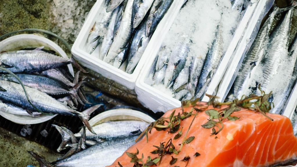İsviçre`de hangi balık daha çok tüketiliyor