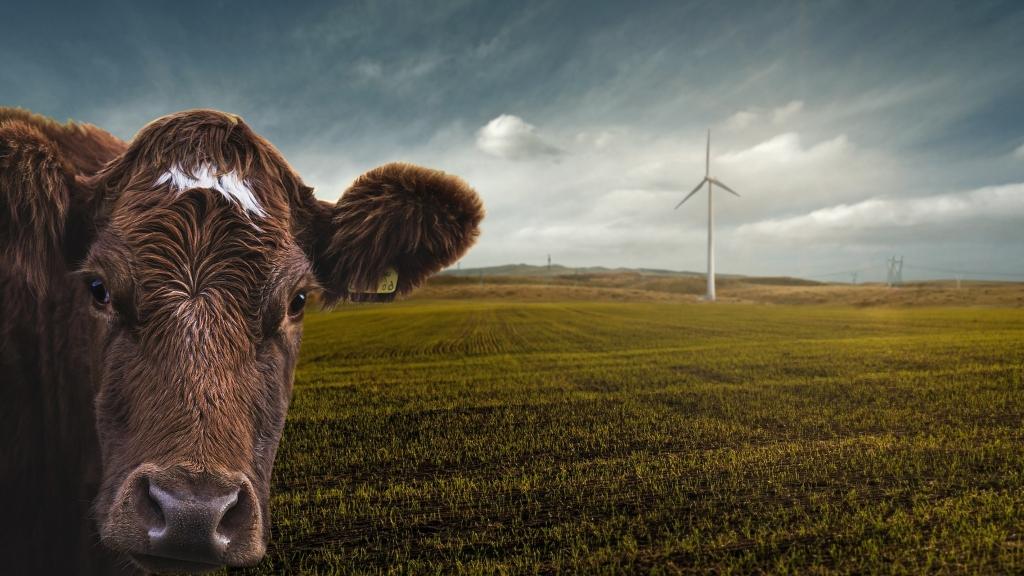 Karbondioksit emisyonlarını sınırlamadan küresel ısınmayı kontrol etmek mümkün değil