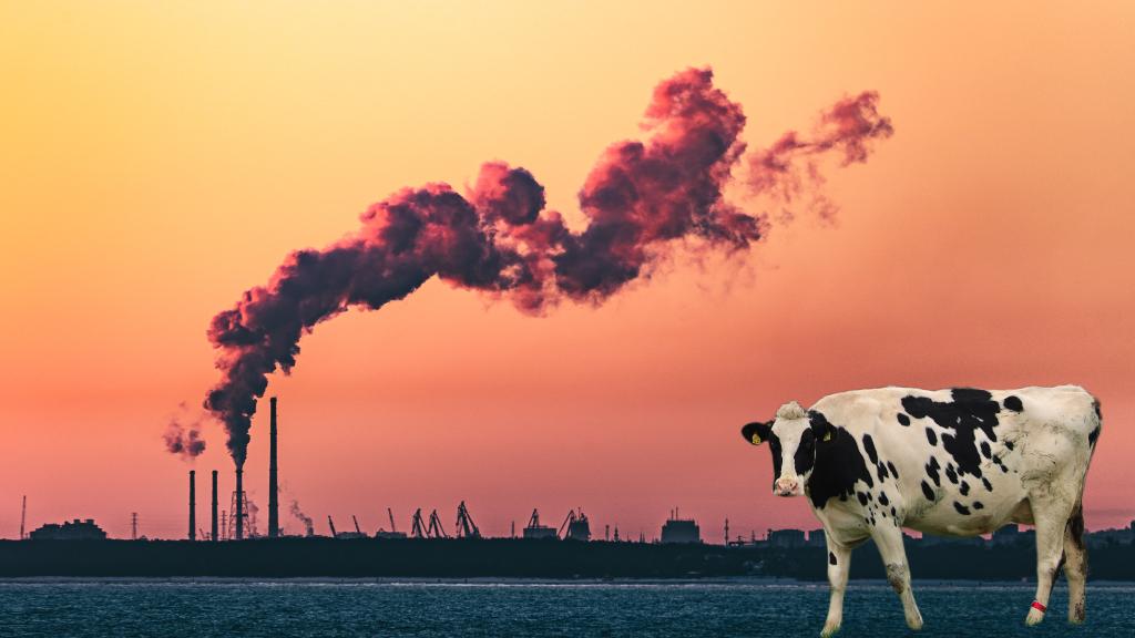 Azaltılan her bir milyon ton metan emisyonu yıllık 1430 erken ölümü önleyebilir!